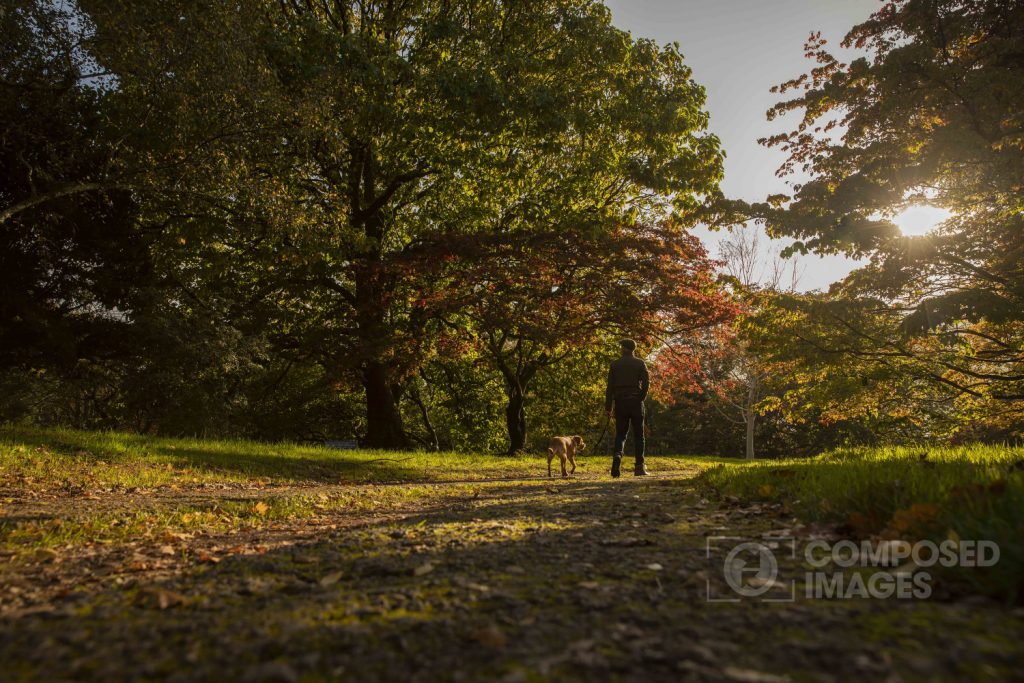 dyffryn-gardens-autumn